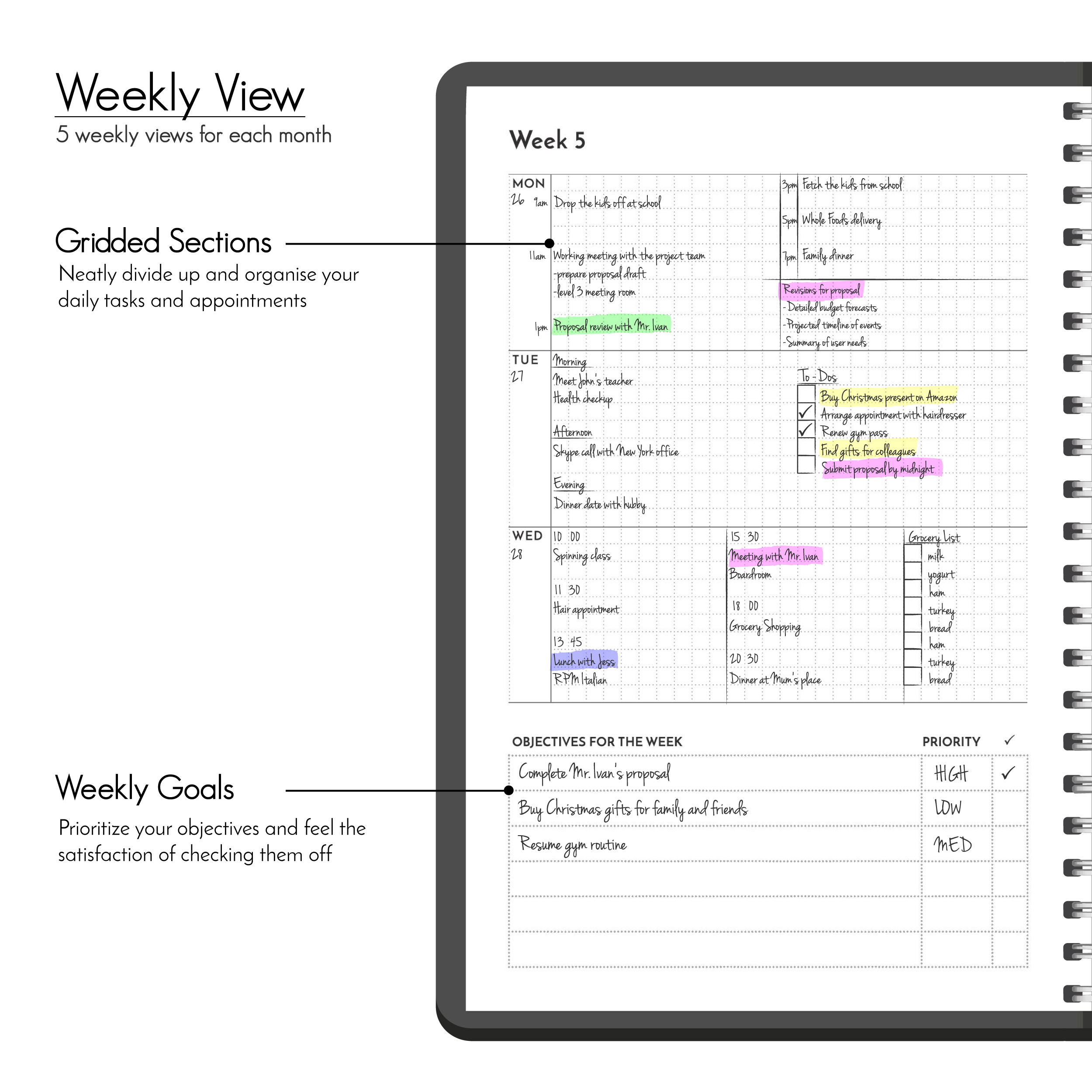 Weekly Planner Gridded Undated Daily Task checklist to do list